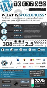 what-is-wordpress-infographic-546x1024